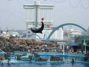 名古屋港水族館21.jpg