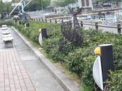 名古屋港水族館9.jpg